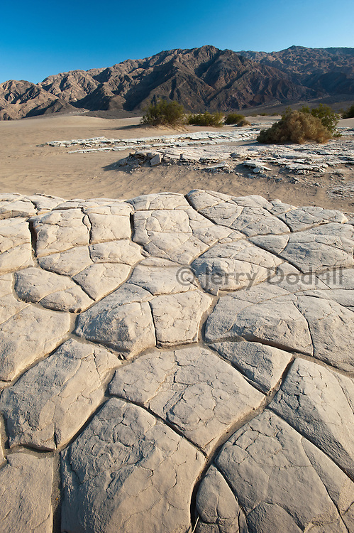 Cracked clay in Mesquite Flat Sand Dunes, in Death Valley National Park near Stovepipe Wells
