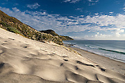 dune of sand ripples dominates this beach scene and new zealand coast, at mangawhai, northland, new zealand