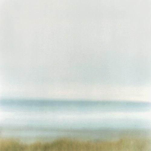 Grass, Sea, and Sky, Biddeford Pool, Maine, 2003