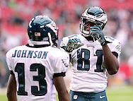 Sept. 23, 2012; Glendale, AZ, USA; Philadelphia Eagles wide receiver Jason Avant (81) and wide receiver Damaris Johnson (13) react on the field at University of Phoenix Stadium. The Cardinals defeated the Eagles 27 - 6. Mandatory Credit: Jennifer Stewart-US PRESSWIRE.