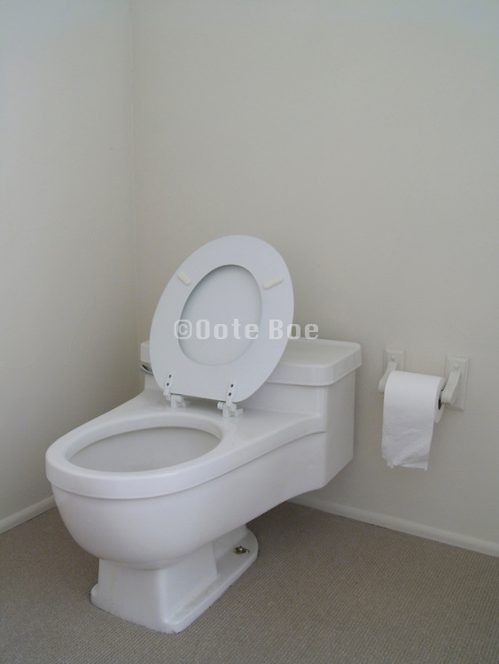 modern water saving toilet with open seat cover