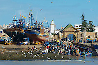 Maroc, Essaouira, Patrimoine mondial de l'UNESCO, le port de peche // Morocco, Medina of Essaouira, Atlantic coast, Unesco world heritage, fishing harbour