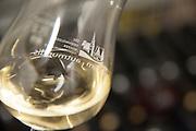 Wein der Winzergenossenschaft Groß-Umstadt, Groß-Umstadt, Odenwald, Naturpark Bergstraße-Odenwald, Hessen, Deutschland | wine of Winzergenossenschaft Groß-Umstadt, Gross-Umstadt, Odenwald, Hesse, Germany