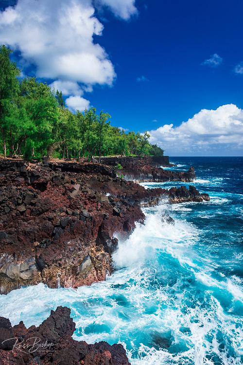 Rocky coastline at MacKenzie State Park, Pahoa, The Big Island, Hawaii USA