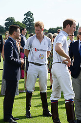 Left to right, MARTIN SANDER, HRH PRINCE HARRY OF WALES and HRH THE DUKE OF CAMBRIDGE at the Audi Polo Challenge 2013 at Coworth Park Polo Club, Berkshire on 3rd August 2013.