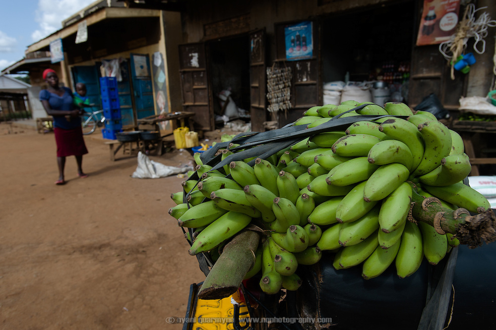 A load of bananas are seen on the back of a motorcycle in the village of Kitengeesa in the Central Region of Uganda on 30 July 2014.