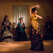 Flamenco in the Adobes