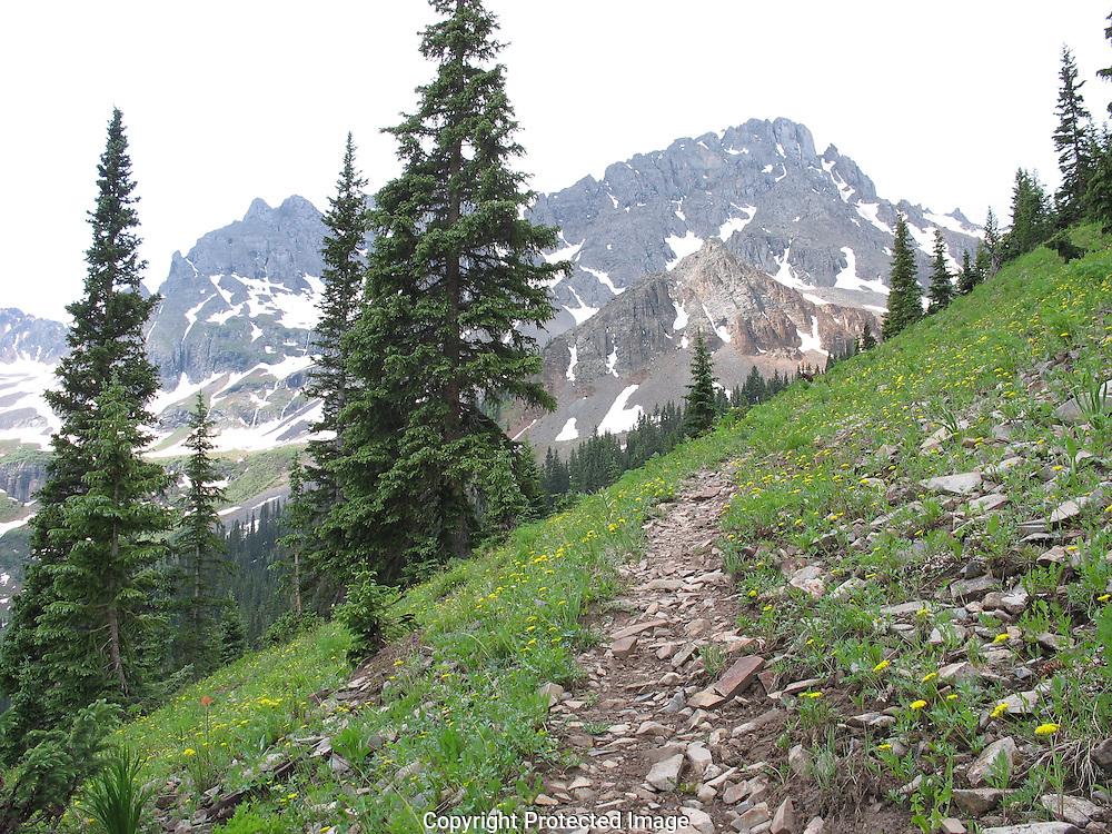 Grant Swamp Pass Trail (horizontal)