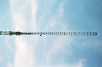 Berlin februar 2012.<br /> Bl&aring; himmel og ei heisekran ved en byggeplass i Berlin.<br /> Foto: Svein Ove Ekornesv&aring;g