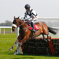 Kempton 20th April