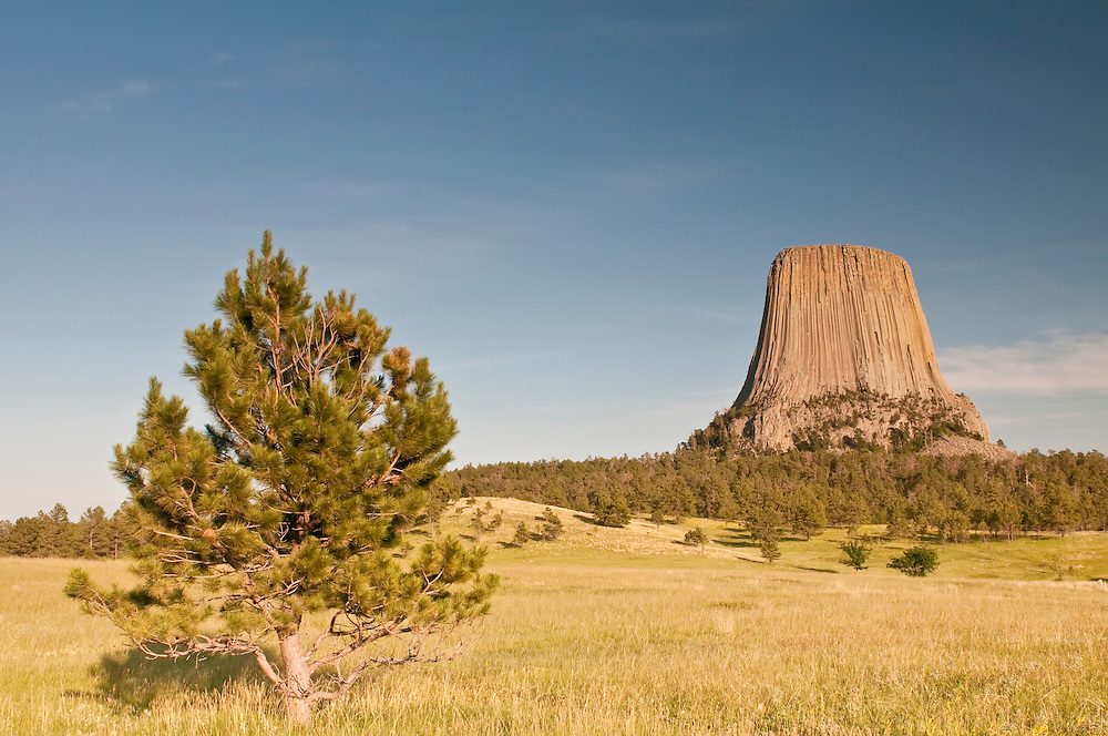 Devil`s Tower National Monument, Wyoming, USA
