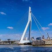 NLD/Rotterdam/20180517 - Erasmusbrug in Rotterdam