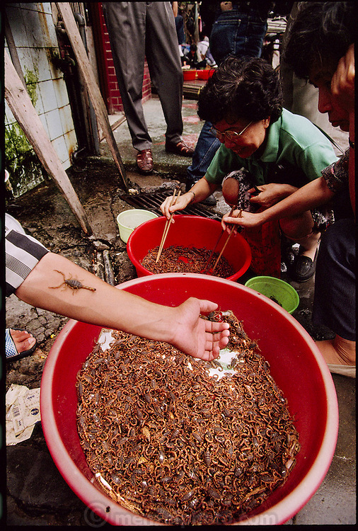 You Zhiming, a young scorpion salesman, allows a scorpion to climb up his arm as a woman and her son choose scorpions for dinner in Guangzhou, China's Qing Ping Market. Scorpions in China are used as both food and traditional Chinese medicine. Scorpions are in such demand that they are raised domestically (ranch style) by Chinese entrepreneurs. They taste a bit like sautéed twigs. (Man Eating Bugs: The Art and Science of Eating Insects page 93)