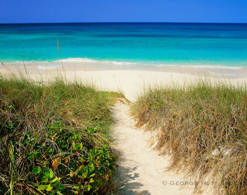 6204-1000 ~ Copyright: George H. H. Huey ~ Path to Atlantic side of beach on Stocking Island. Near George Town and Great Exuma Island, Exuma Cays, Bahamas.
