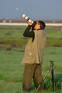 Photographer photographing migratory birds in winter, Merced National Wildlife Refuge, Central Valley, California