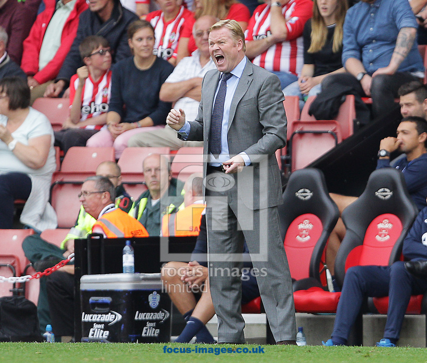 Ronald Koeman, Manager of Southampton during the Barclays Premier League match at the St Mary's Stadium, Southampton<br /> Picture by Paul Terry/Focus Images Ltd +44 7545 642257<br /> 27/09/2014