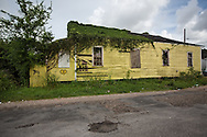 June 13, 2015, New Orleans, LA, Blighted vine covered home in mid-city.<br /> Properties destroyed by Hurricane Katrina, remain scattered around New Orleans nearly ten years after the storm.