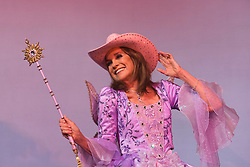 © Licensed to London News Pictures. 01/12/2014. London, England. In true Dallas-style, Linda Gray wears a pink Stetson. Photocall with Dallas-actress Linda Gray who makes her pantomime debut playing the Fairy Godmother in Cinderella at the New Wimbledon Theatre from 5 December 2014 to 11 January 2015. The cast included Tim Vine, Matthew Kelly and Wayne Sleep. Photo credit: Bettina Strenske/LNP