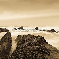 Start Point ( Devon)