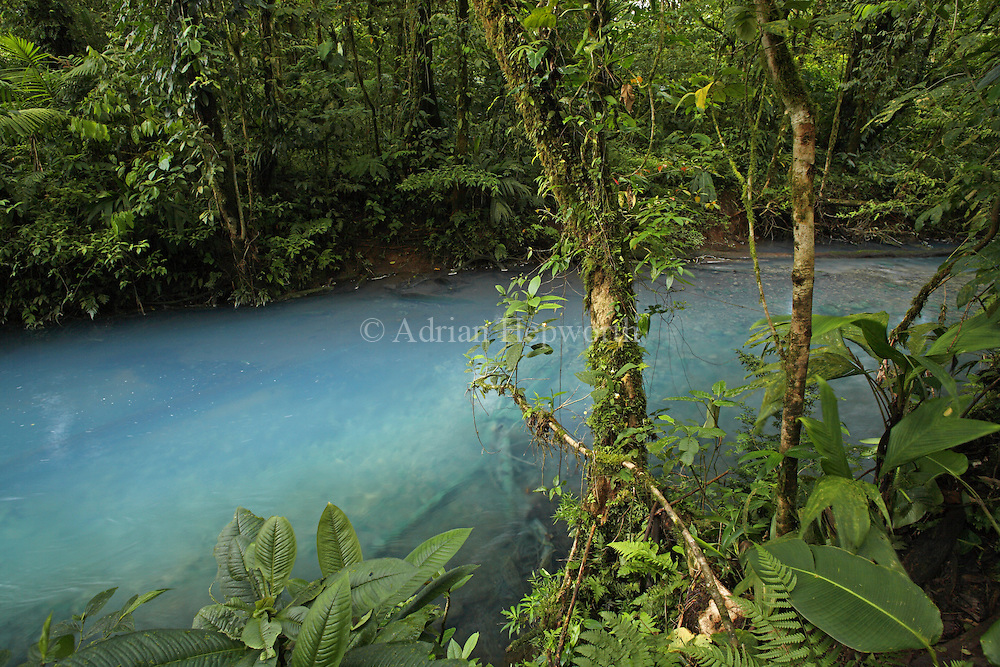 Rio Celeste (Blue River) in Tenorio Volcano National Park, Costa Rica. February 2012..The blue coloration is a result of sulphur from the volcano seeping up through the river bed and mixing with calcium carbonate in the water.<br />