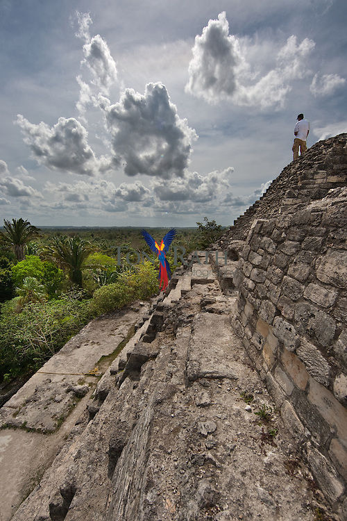 A man standing at the top of the Maya ruin in Lamanai, Orange Walk District, Belize