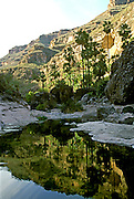 MEXICO, BAJA CALIFORNIA San Pablo Canyon in Sierra San Francisco