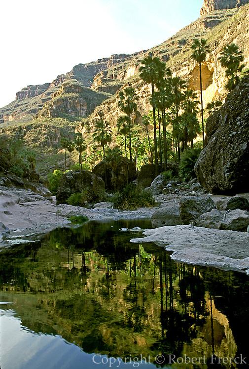 MEXICO, BAJA CALIFORNIA San Pablo Canyon in Sierra San Francisco