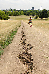 © Licensed to London News Pictures. 25/07/2018. LONDON, UK.  Cracked earth on a trail on Primrose Hill amidst parched grass and hot conditions.  The forecast is for temperatures to rise to 35C by the end of the week.  Photo credit: Stephen Chung/LNP