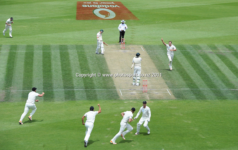 Martin Guptill takes a catch at second slip off the bowling of Doug Bracewell to dismiss James Pattinson on Day 4 of the second cricket test between Australia and New Zealand Black Caps at Bellerive Oval in Hobart, Monday 12 December 2011. Photo: Andrew Cornaga/Photosport.co.nz