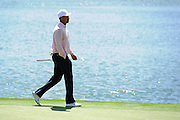 Tiger Woods of the U.S. walks along the 12th green during the 2013 Tavistock Cup golf tournament  at Isleworth Golf and Country Club in Windermere, Florida March 26, 2013. ©2013 Scott A. Miller