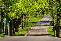 Pisgah Pike, Versailles, near Lexington, Kentucky USA.