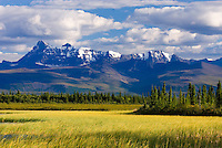 Tanada Peak seen from the wetalnds along the Nebesna Road, Wrangell-St. Elias National Park Alaska