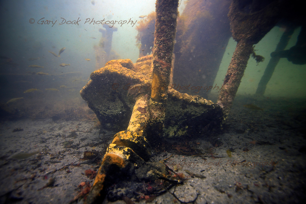 Diving the wrecks of the blockships at barrier number 2, the Churchill Barriers, Scapa Flow, Orkney.<br /> <br />  To purchase a print or personal use download add your image to the cart.<br /> <br /> *Please note - you can use your credit card for payment via paypal. There is no need to register with paypal.