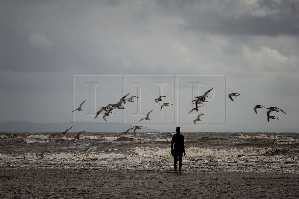 """© Licensed to London News Pictures . Crosby , UK . File picture dated 07/07/2015 of Crosby Beach , featuring an """" iron man """" , a part of Antony Gormley's """" Another Place """" installation . The organisation that brought the installation to the site , Regenerus (or South Sefton Development Trust as it was in Summer 2005) is celebrating the tenth anniversary since its installation , at an exhibition starting today (7th September 2015) at nearby Crosby Lakeside Adventure Centre . Photo credit : Joel Goodman/LNP"""