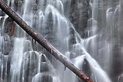 Crabtree Falls details.