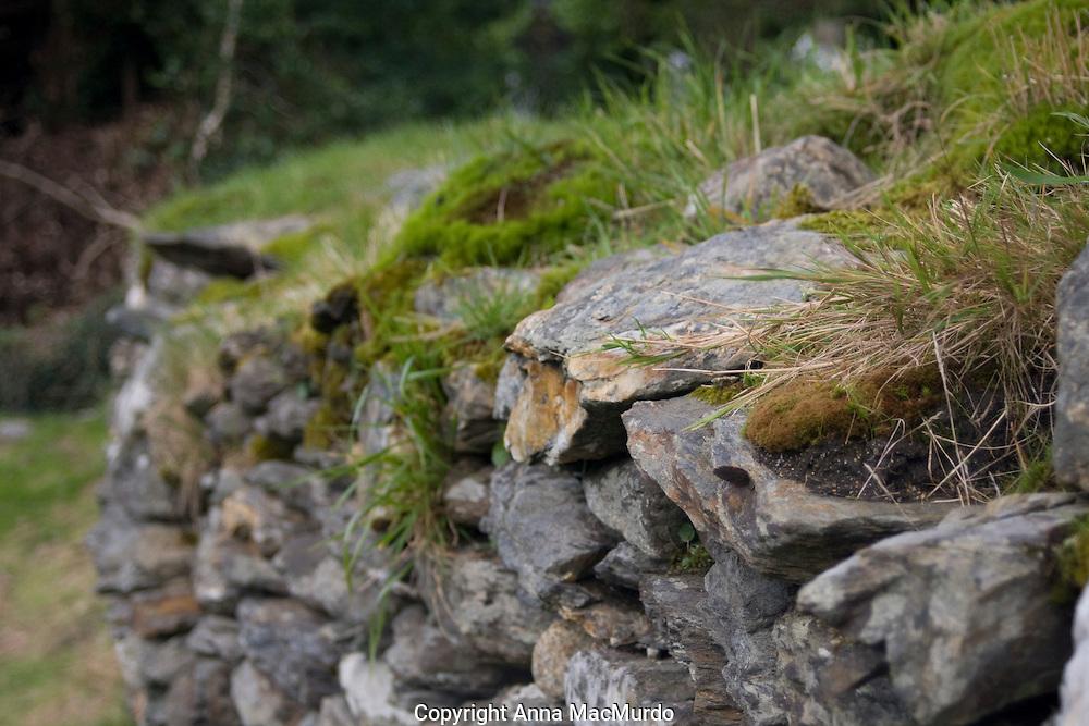 Glendalough National Park, Wicklow, Ireland