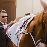 Aiden O'Brien saddling Alice Springs for Poule d'Essai des Pouliches in Deauville 15/05/2016