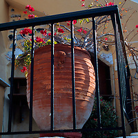 Europe, Mediterranean, Aegean, Greece, Greek Islands, Santorini, A potted bouganvillia adds color to a Santorini balcony.