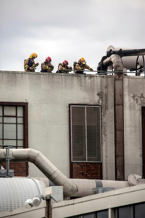 The Fire Service respond to a oven fire at the Sanitarium factory which spread up through the ducting and caused the evacuation of the Pah Road site in Royal Oak, Auckland, New Zealand, Wednesday, November 27, 2013. Credit:SNPA / Bradley Ambrose