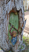 SHANGHAI, CHINA - SEPTEMBER 07:<br /> <br />  Image shows a painting of squirrel on a tree hole at Jinhai Road Campus, Shanghai Second Polytechnic University on September 7, 2016 in Shanghai, China. University students painted cartoon figures on holes of 30 plane trees to welcome new students and to dress up their campus. Students used paintbrushes to turn ugly tree holes into lovely views. <br /> ©Exclusivepix Media