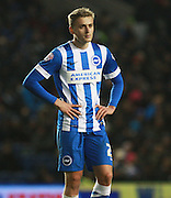 Brighton striker James Wilson during the Sky Bet Championship match between Brighton and Hove Albion and Birmingham City at the American Express Community Stadium, Brighton and Hove, England on 28 November 2015. Photo by Bennett Dean.