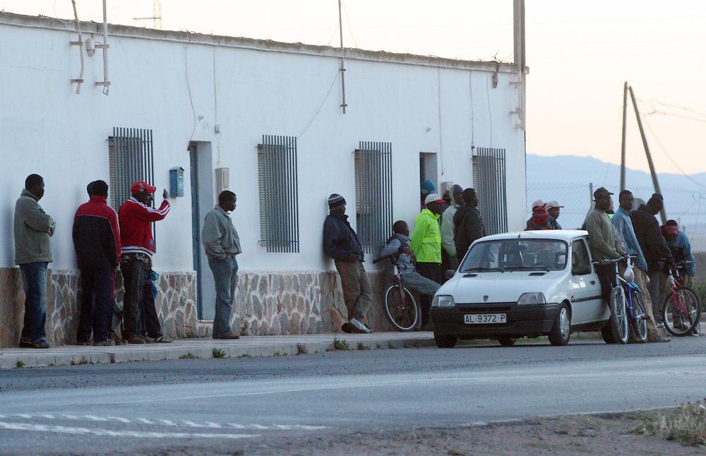 """EUROPE - SPAIN - EL EJIDO ; Illegal Immigration - VEGETABLE & FRUIT Production in Andalusia ; EL PLASTICO ; Exploitation of African workers;.The fruits and vegetables grown in the area are worth about $1.8 billion a year. Most of the workers are Moroccans, often called """"Moros"""" in reference to the Moors who ruled southern Spain for 700 years; Europa - SPANIEN - Landwirtschaft.Die Region um El Ejido, Provinz Almeria in Andalusien, gilt als Europas  größter agrarindustriell genutzter """"Wintergarten"""". Unter ca. 36.000 Hektar Plastik (Treibhäusern) wird ganzjährig Obst und Gemüse angebaut, welches zum Großteil in Supermärkten in Nordeuropa, Deutschland und England verkauft wird... Unter den Plastikplanen werden ca. 60.000, meist illegale Einwanderer aus Marokko, Schwarzafrika, Osteuropa beschäftigt. Arbeitsschutz und Mindestlöhne werden nicht eingehalten. .HIER:Täglich warten im Intensivanbaugebiet von Almería Tausende Tagelöhner auf ihre Anwerbung durch die Patrones, um in einem der Gewächshäuser einen Tagesjob als Erntehelfer zu ergattern; an einer Straße morgens um 7Uhr30 nahe  La Mojonera....22.03.2007.Copyright: Christian Jungeblodt"""