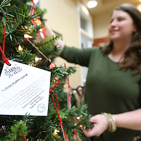 Rachel Allred, Director of the Tupelo-Lee Humane Society, decorates the Santa Paws Christmas Tree that is set up inside the Mayor's office in Tupelo. The tags that have the needs of pets and the humane society posted on the back.