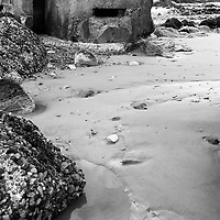 World War II Defences on the Beach at Cayton Bay Scarborough North Yorkshire England