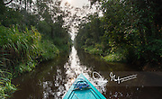 A Klotok river boat navigates the Sekonyer river in Southern Borneo along the Tanjung Puting National Park, Indonesia.