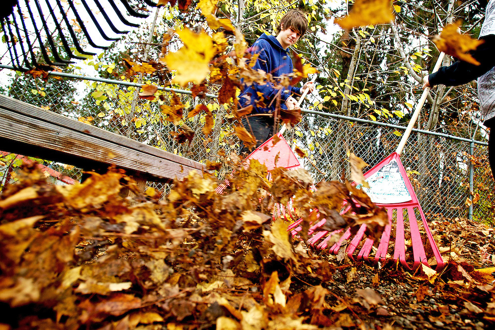 "Gage Toews, 16, helps rake leaves from a garden area Monday at Winton Elementary in Coeur d'Alene during Community Action Day. About 150 students from Project CDA and the Bridge Academy volunteered two to three hours of service to the community by helping with maintenance projects and arts and enrichment activities. ""The school and its students decided to implement this day as a transition between terms and as a way to build community connections both within the student population and with the rest of the school district community at large,"" said Daniel Taylor, a teacher Project CDA."