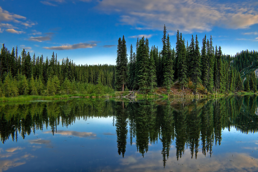 High dynamic range (HDR) image of late evening at Horseshoe Lake near the entrance to Denali National Park, Alaska