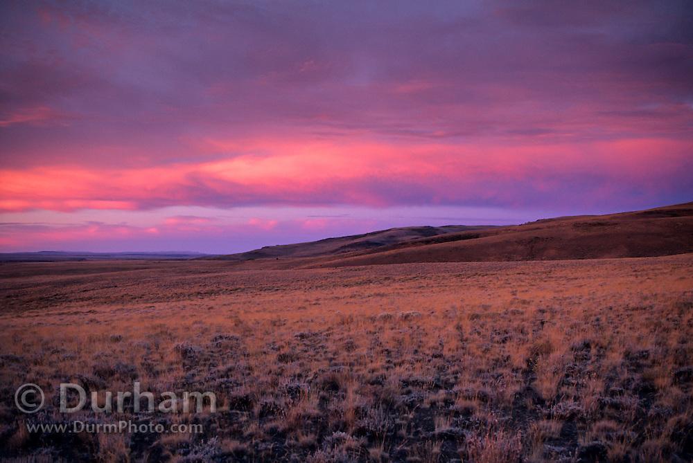 high-desert grassland at sunset, Hart Mountain National Wildlife Refuge, Oregon.