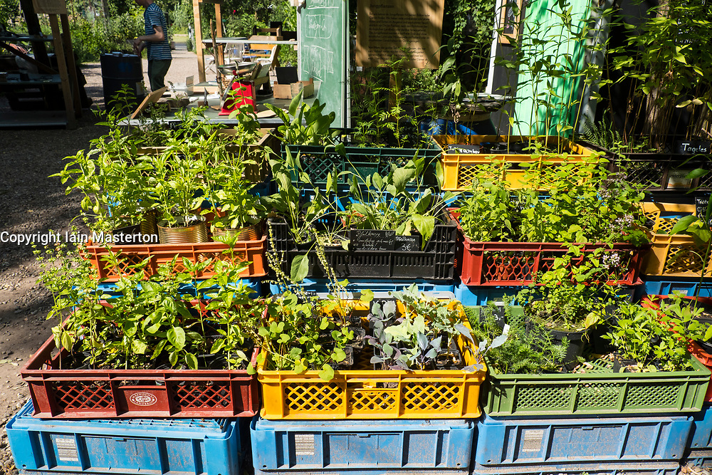 view of  plants for sale at urban city community garden called Prinzessinnengarten in Kreuzberg, Berlin, Germany.