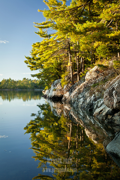 Trees, rocks, and sky reflet in the waters of Somes Sound.